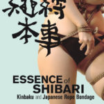 Essence of Shibari